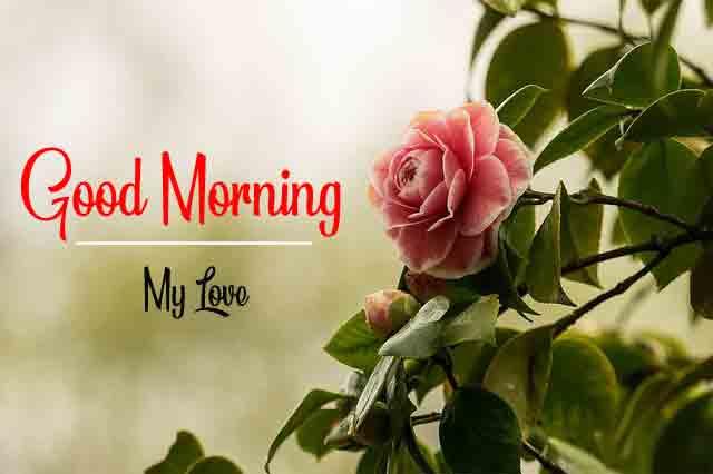 Good Morning Dear Pics HD 2