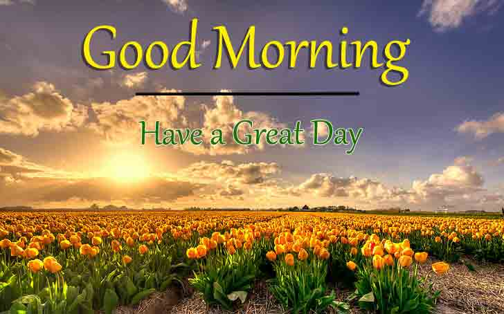 Good Morning Dear Pics Pictures 2021