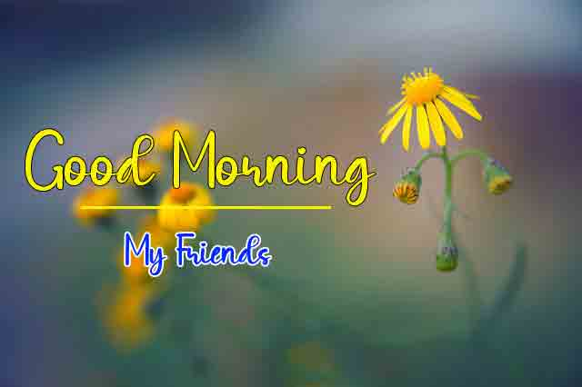 Good Morning Dear Pics Pictures 3