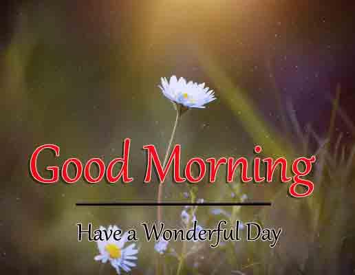 Good Morning Dear Pics