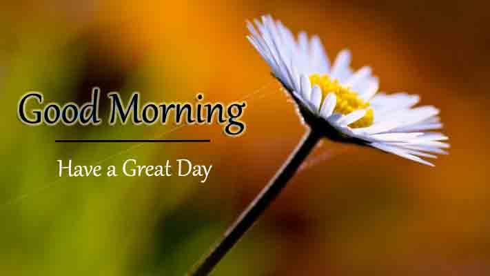 Good Morning Dear Wallpaper 2