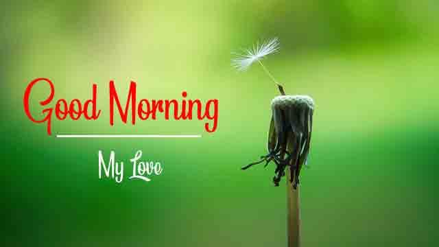 Good Morning Latest HD