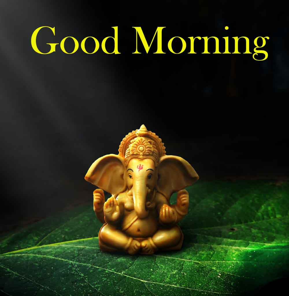 Good Morning Pics HD New Download