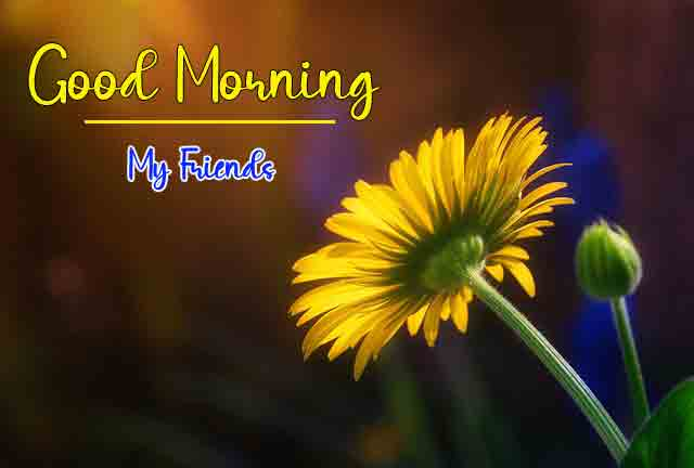Good Morning Pics Pictures Download