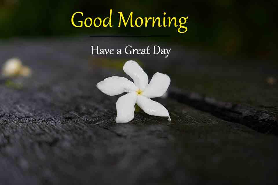 Good Morning Wallpapr