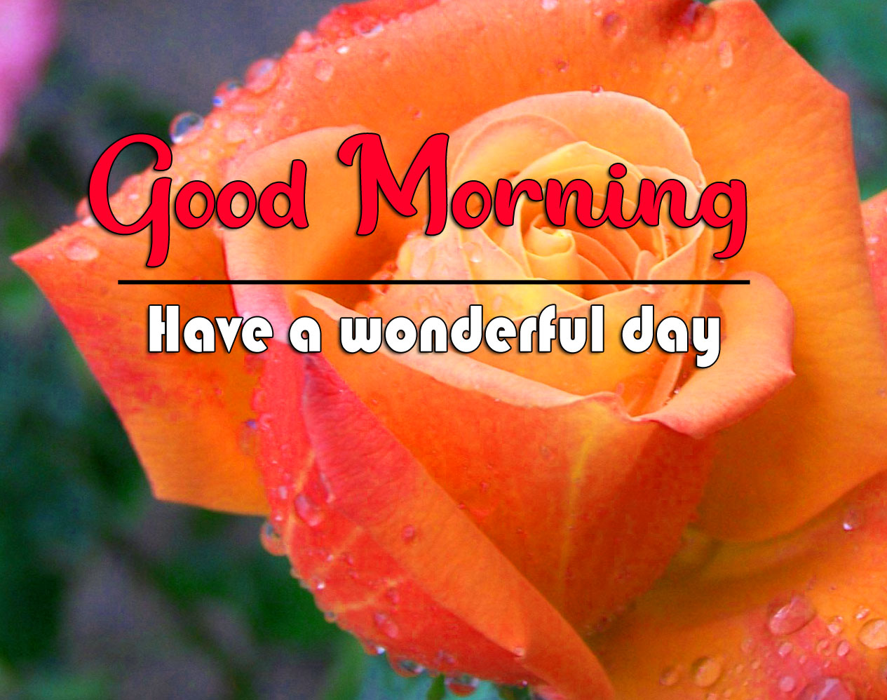 Good Morning Wishes Pics 2021 2