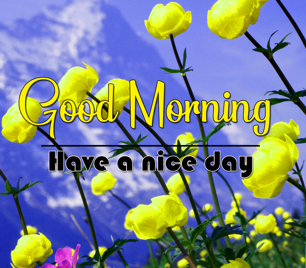 Good Morning Wishes Pics Pictures 2021 2