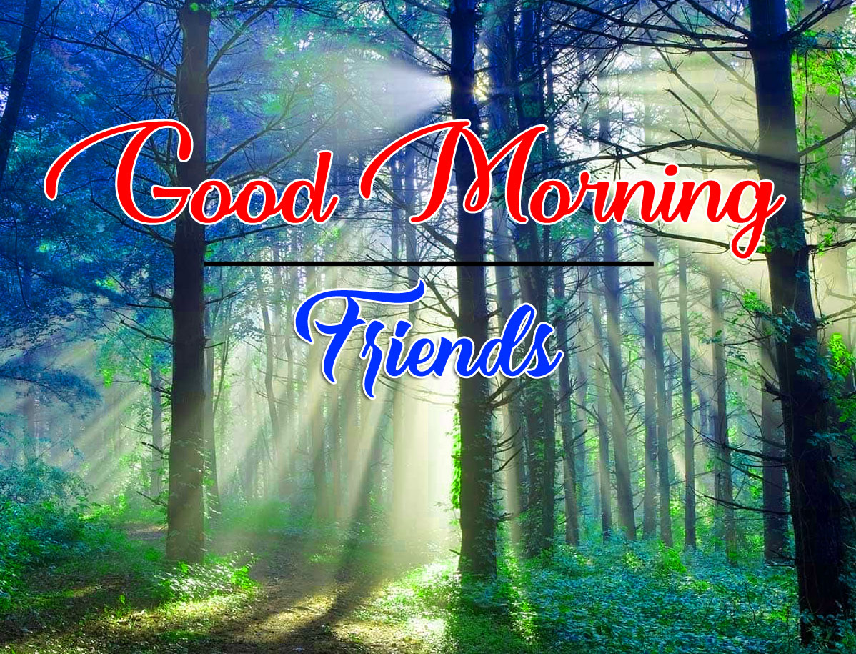 Good Morning Wishes Pics Pictures 2021
