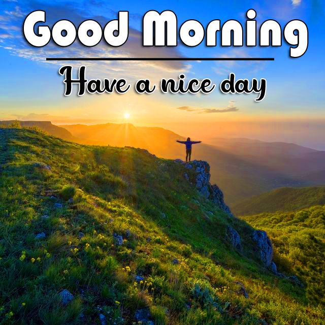 Good Morning Wishes Pics Wallpaper With Nature