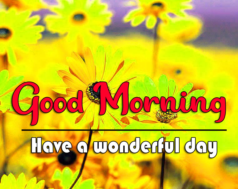 Good Morning Wishes Pictures With Nature