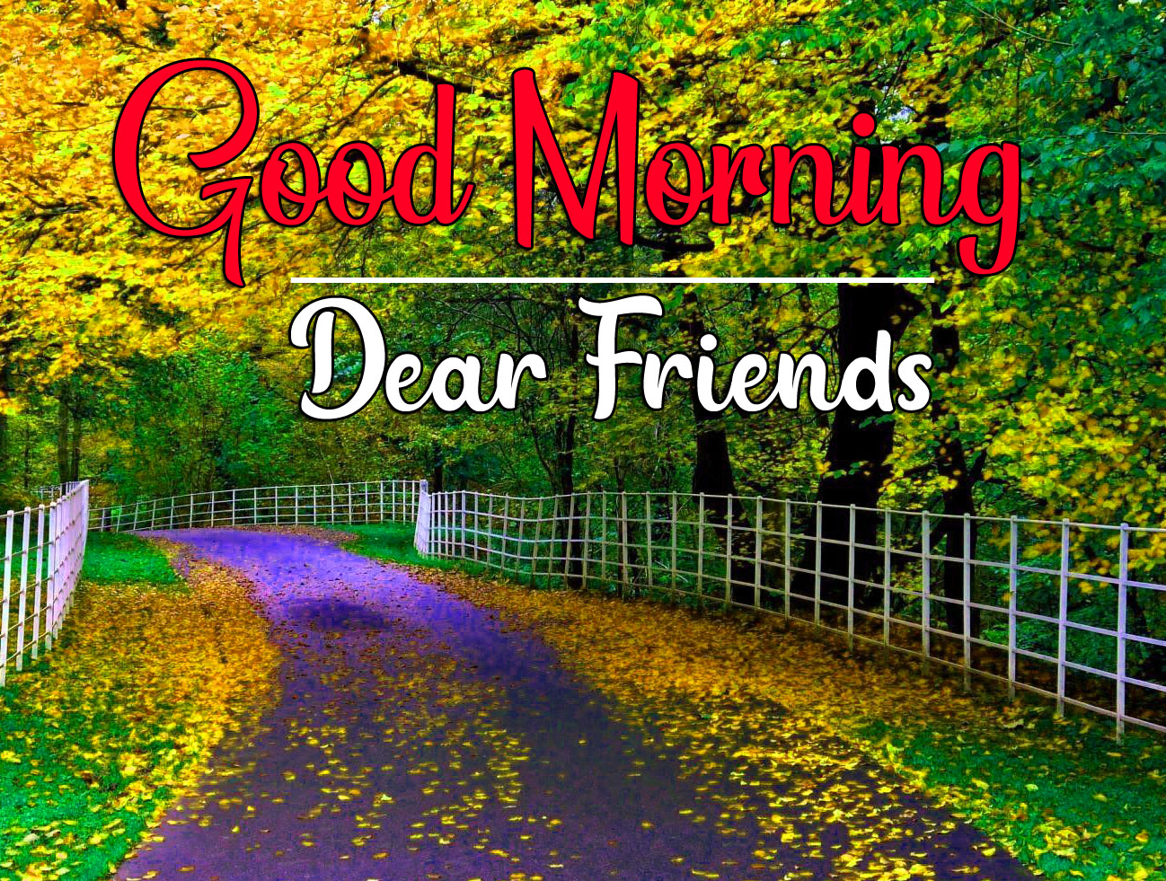 Good Morning Wishes Wallpaper With Nature