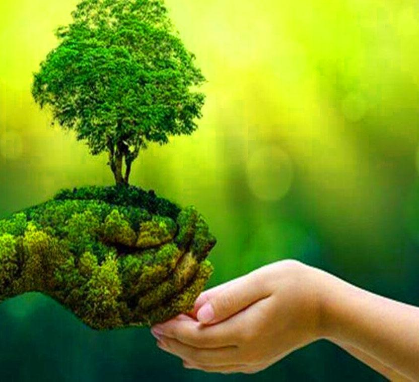 Green solution 1