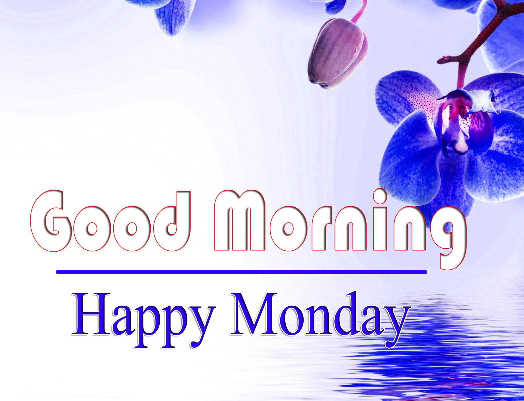 HD Free Quality Monday Good Morning Images 1