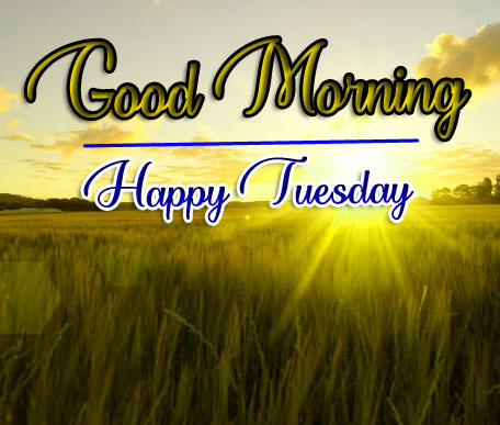 HD New Tuesday Good morning Images