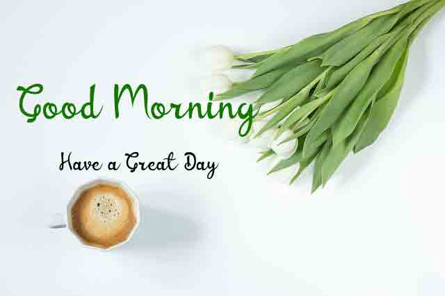 HD Quality Good Morning Dear Images 2021