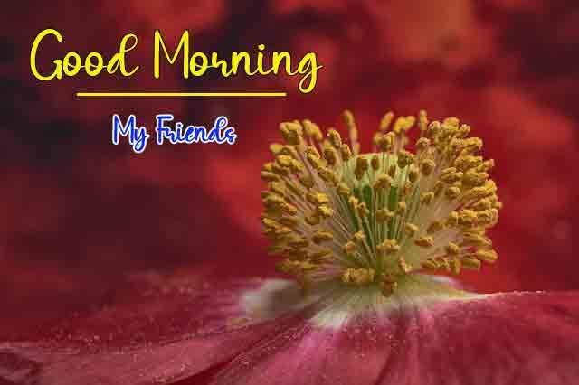 HD Super Good Morning Dear Images Download