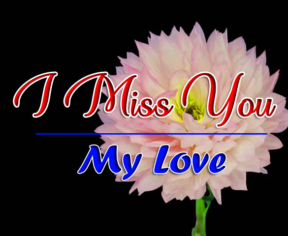 I miss you Images With Flower