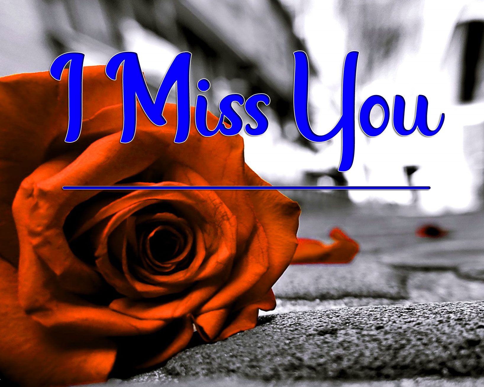 I miss you Pics 2021 4