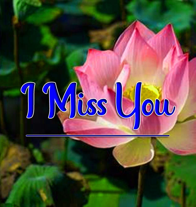 I miss you Pics Pictures 2021 4