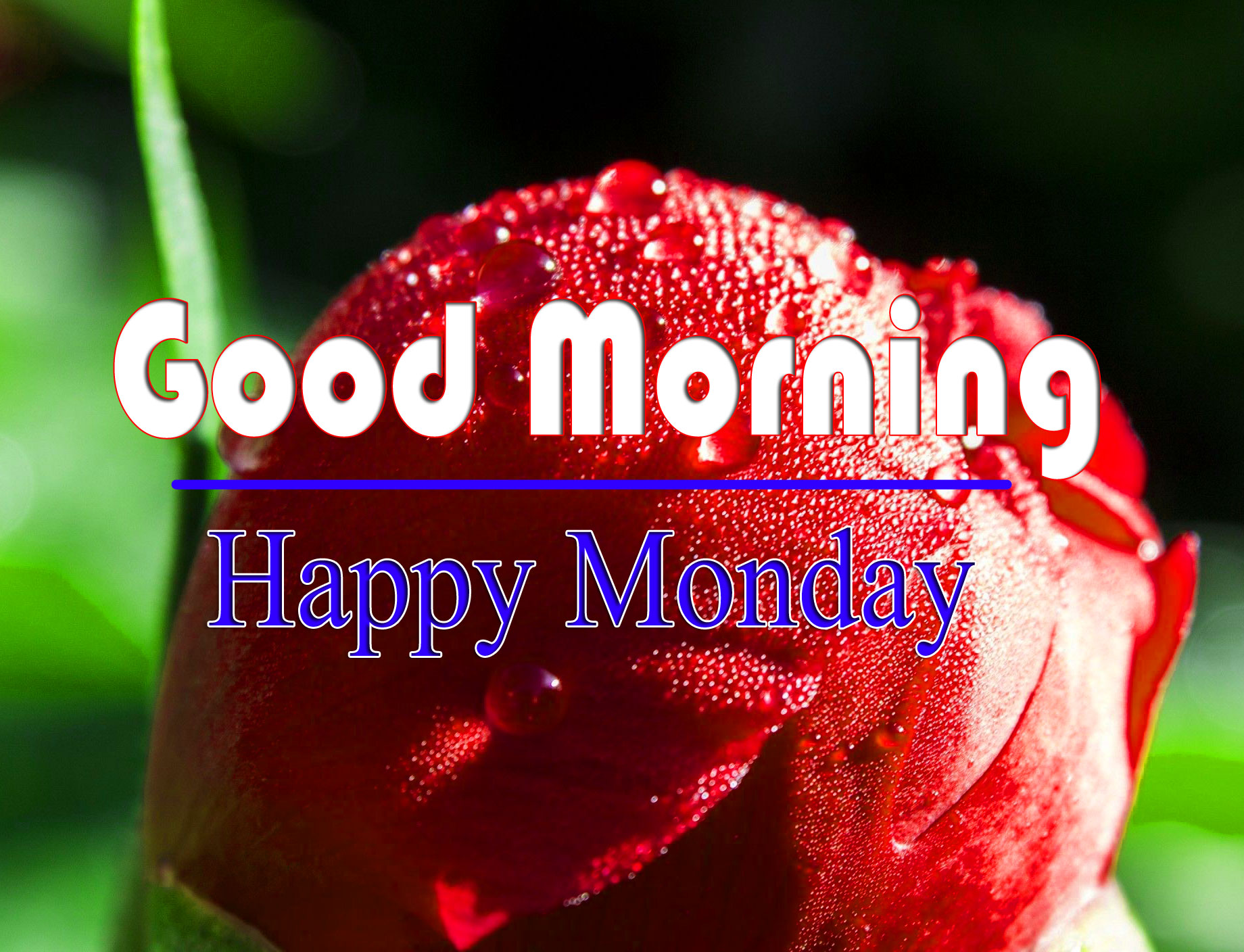 Latest HD 2021 Monday Good Morning iMAGES 1