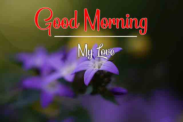 Latest HD Good Morning Dear iMAGES 2