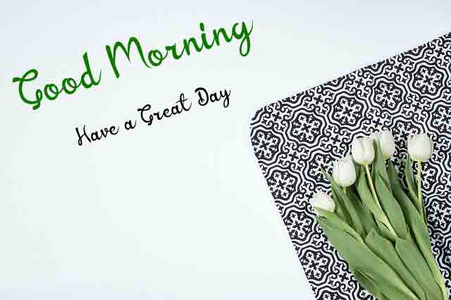 Latest HD Good Morning Images