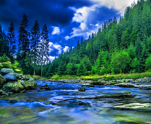 Latest HD Nature Latest DP Images 1