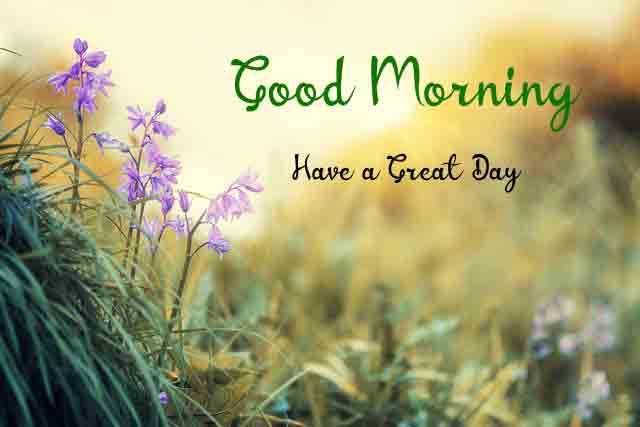 Love Good Morning Images Pics Pictures