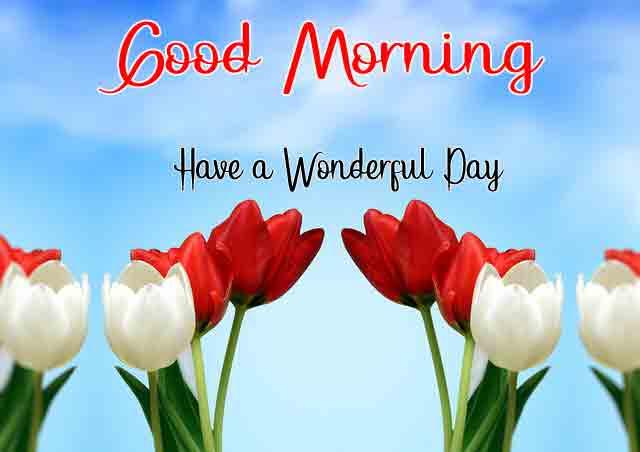 Love Good Morning Images Wallpaper