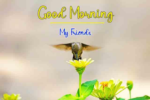Love Good Morning Wallpaper