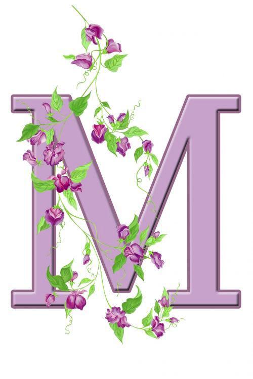 M Name Dp Images photo hd