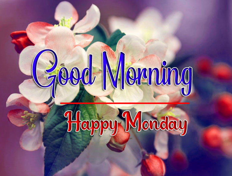 Monday Good Morning Images 1