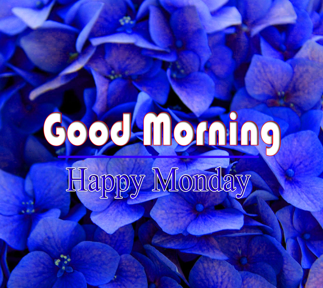 Monday Good Morning Images For Friend 1