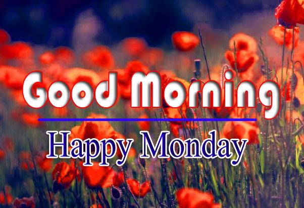 Monday Good Morning Pics Download 1