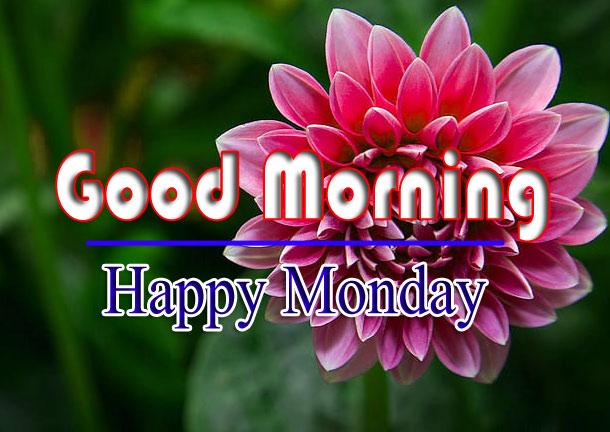 Monday Good Morning Pics Download Free 1