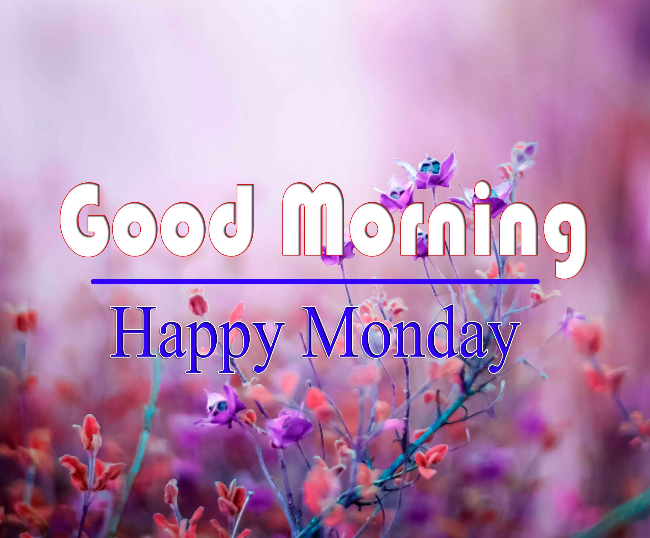 Monday Good Morning Pics Free 1