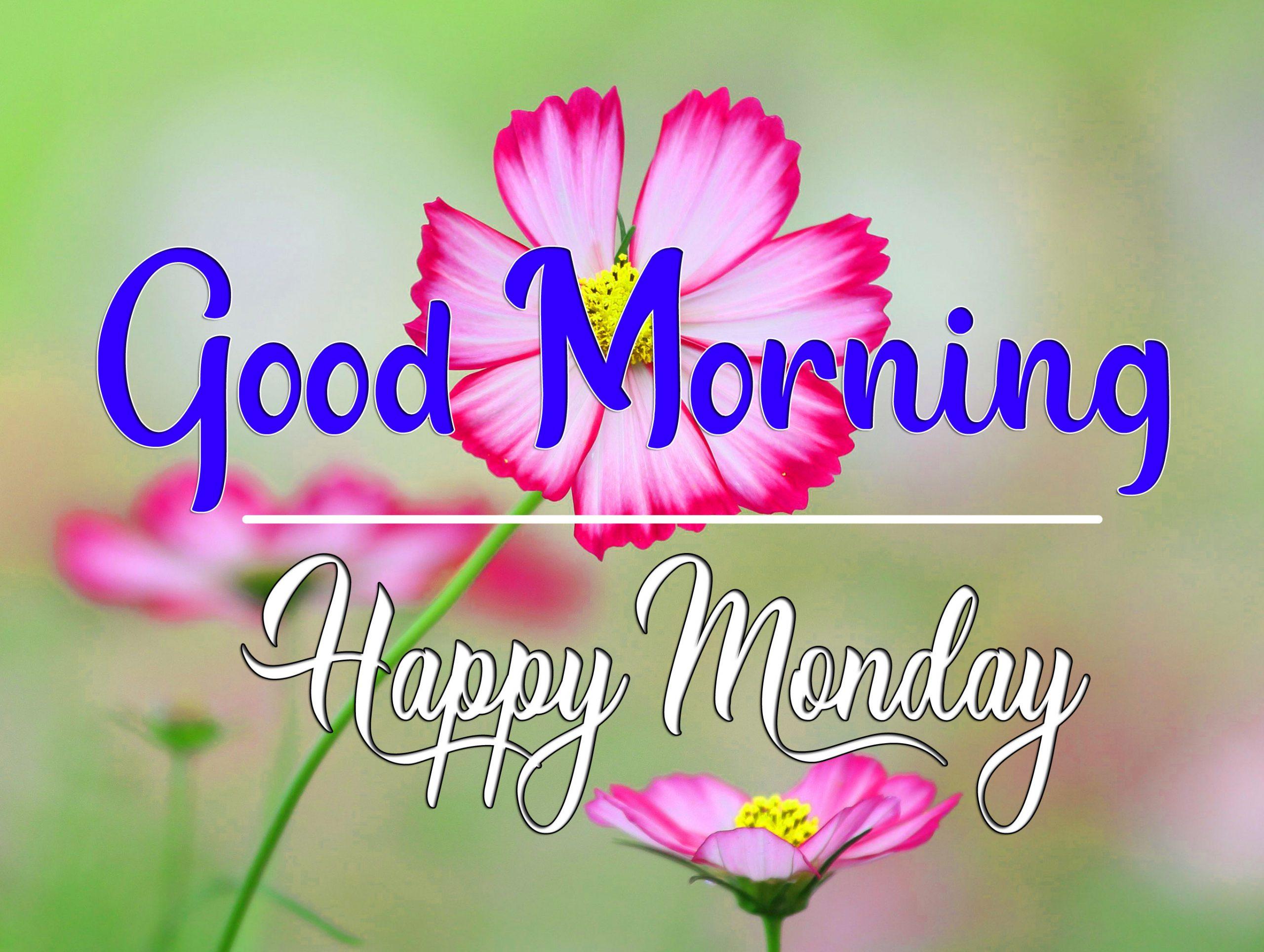 Monday Good Morning Pics Images 2021 1