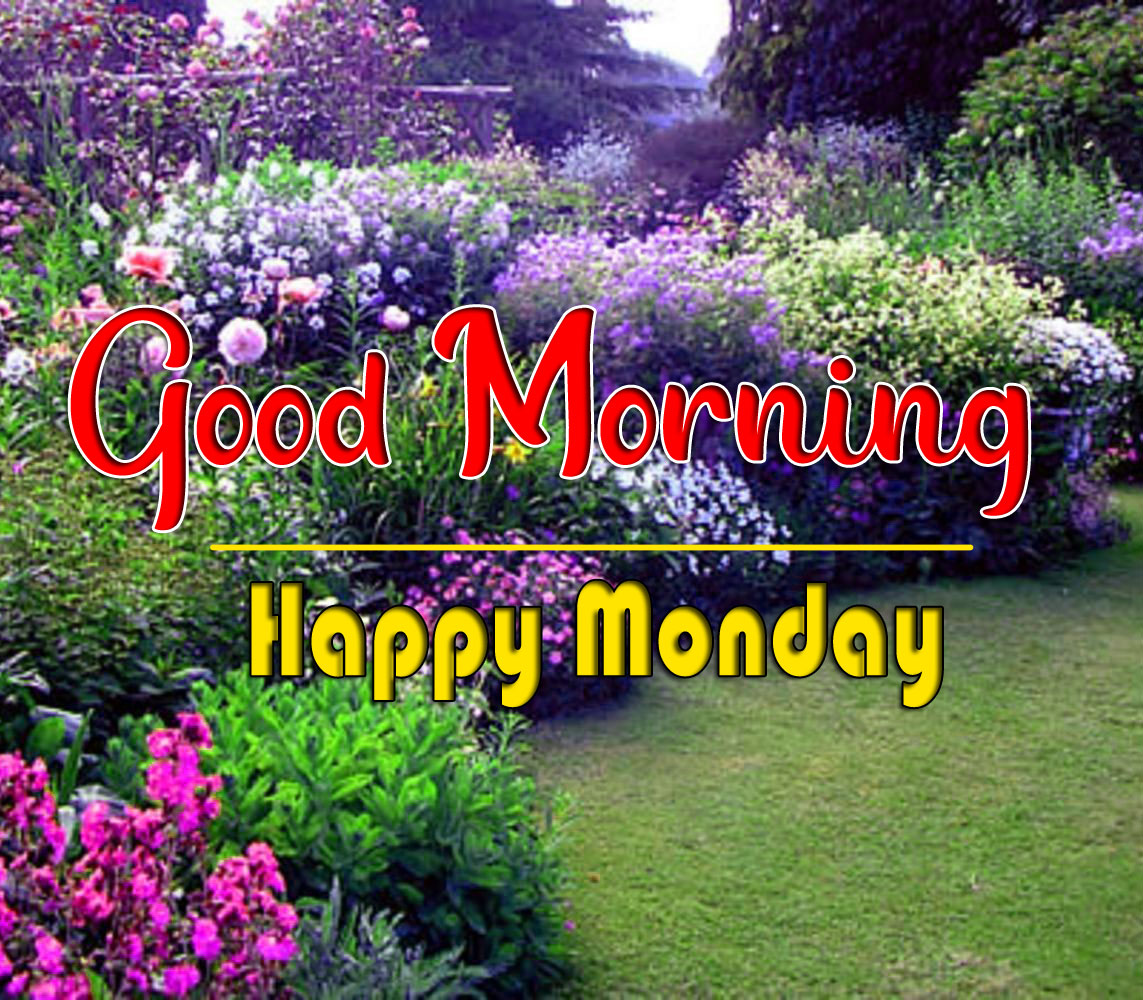 Monday Good Morning Pics Pictures 1