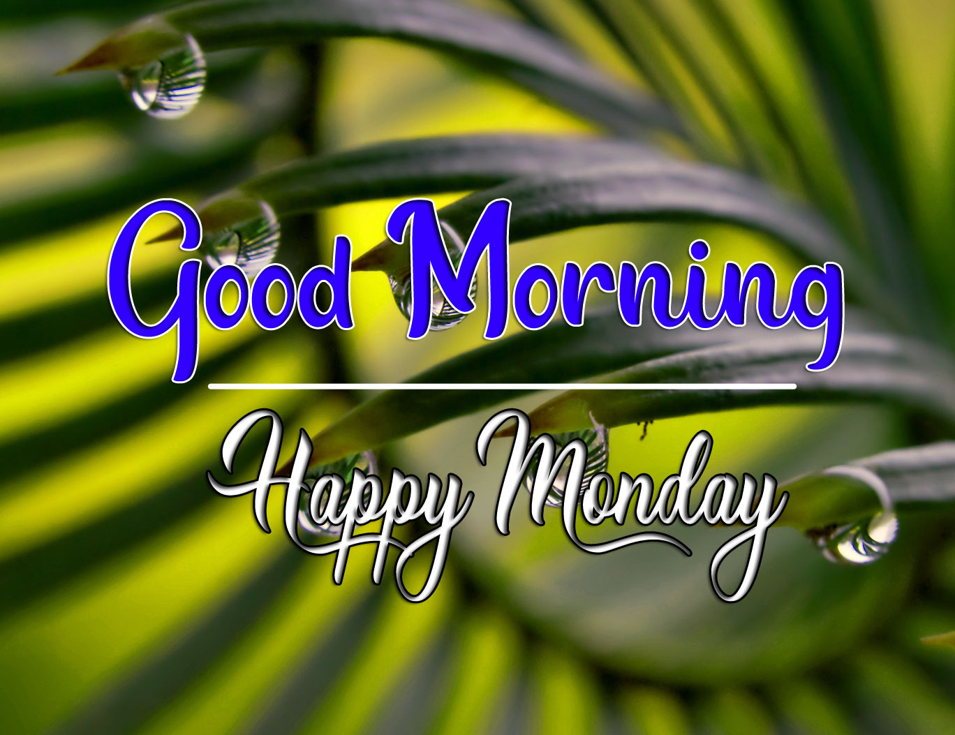 Monday Good Morning Pics Pictures 2 1