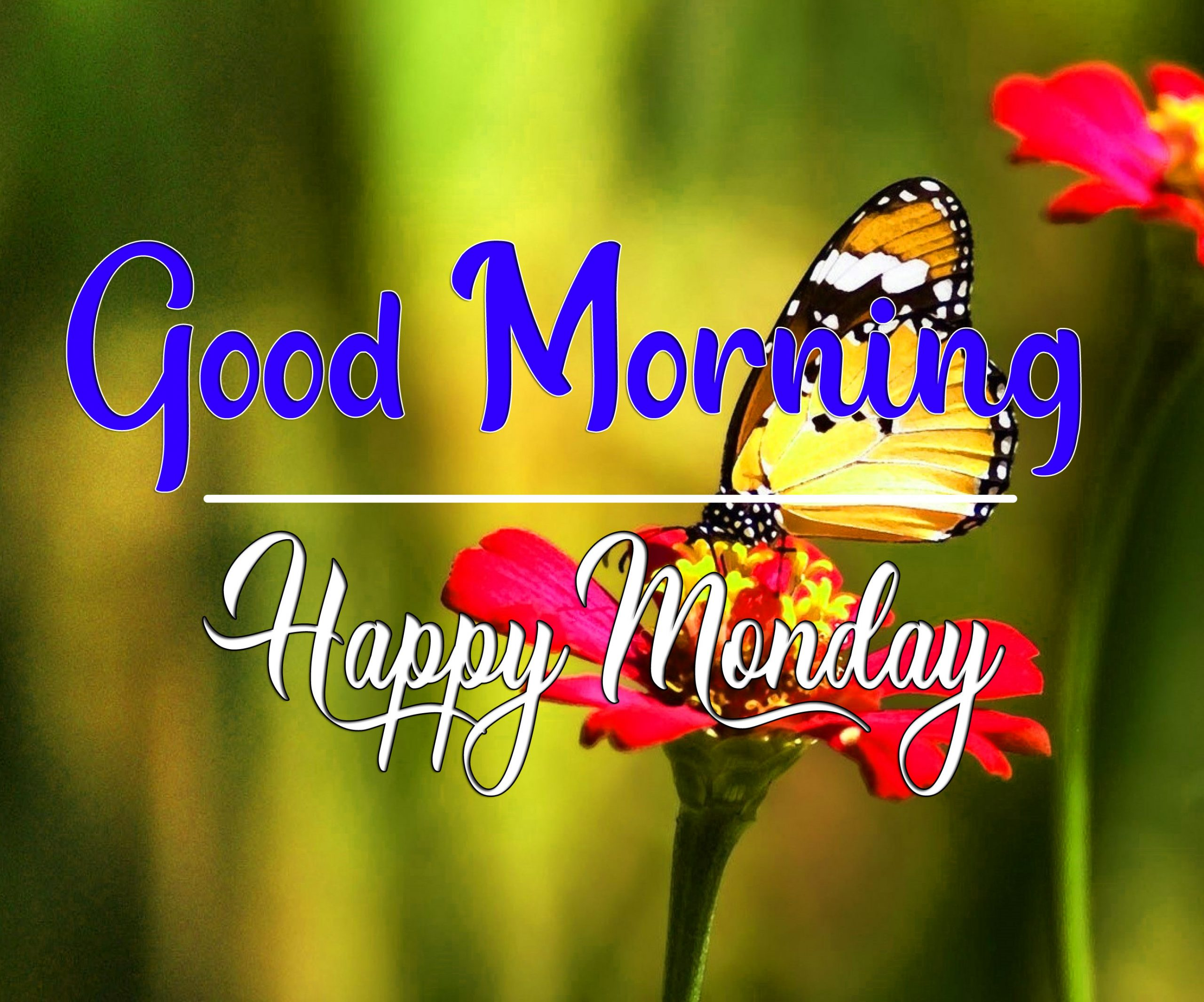 Monday Good Morning Pics Pictures 2021 1