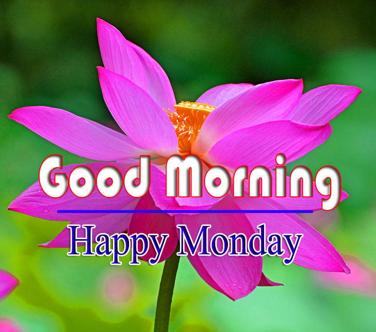 Monday Good Morning Pics Pictures 3 1