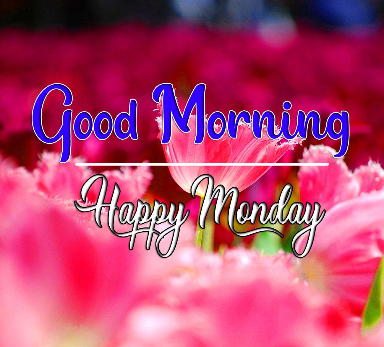 Monday Good Morning Wallpaper HD Download