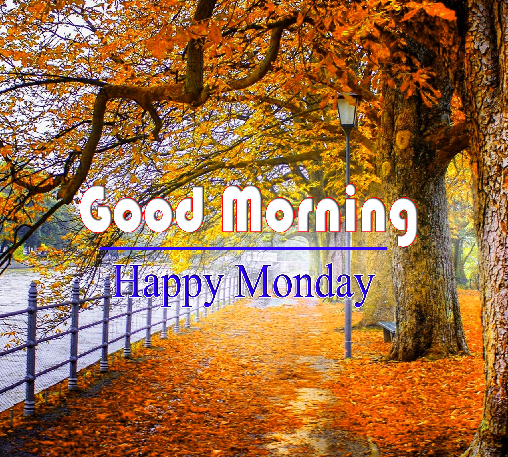 Monday Good Morning Wallpaper Images With Nature