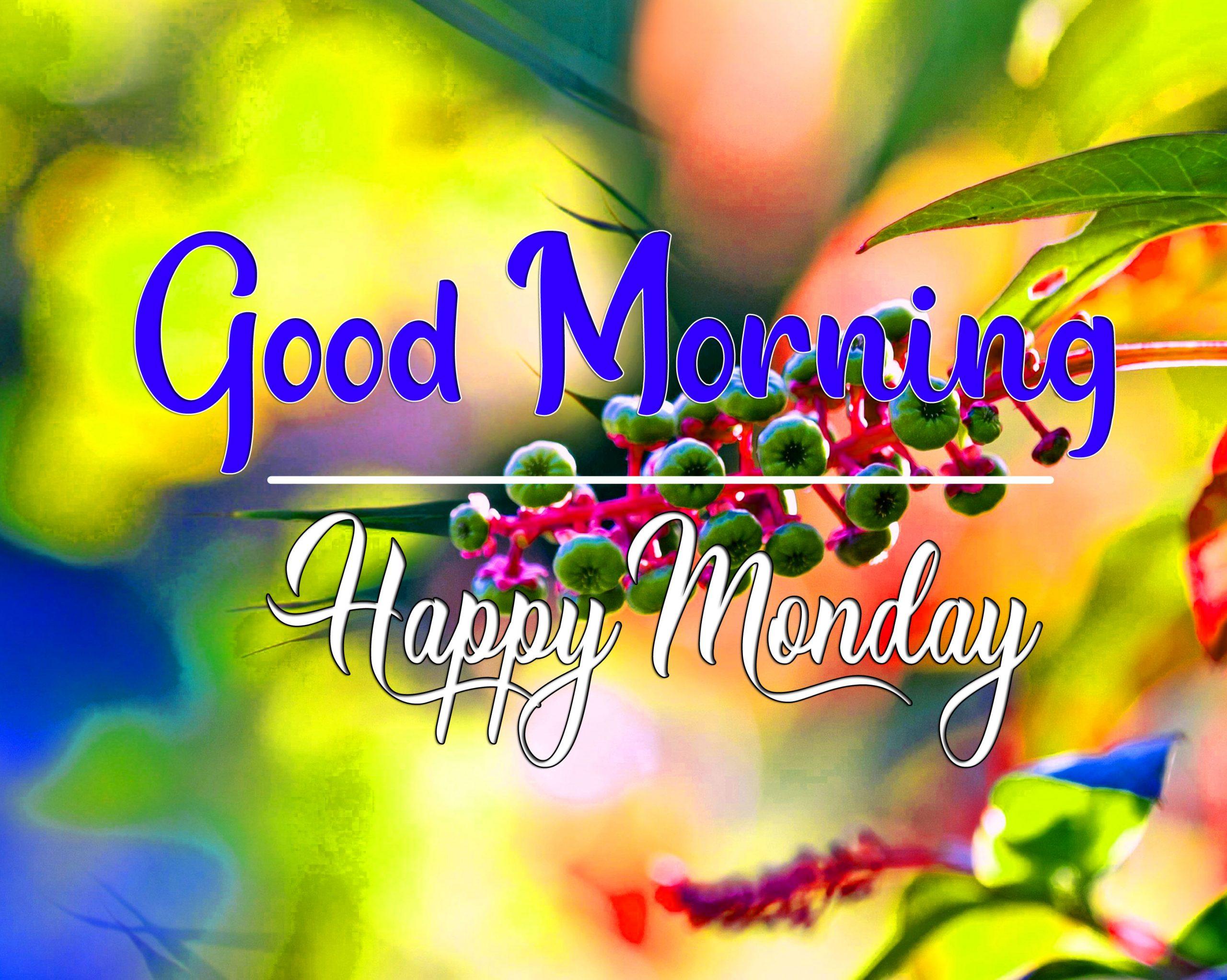 Monday Good Morning Wallpaper for Status 1