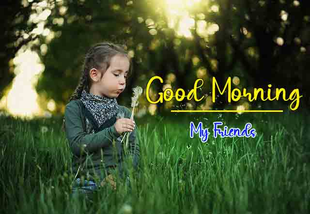 Nature HD Good Morning Dear Images