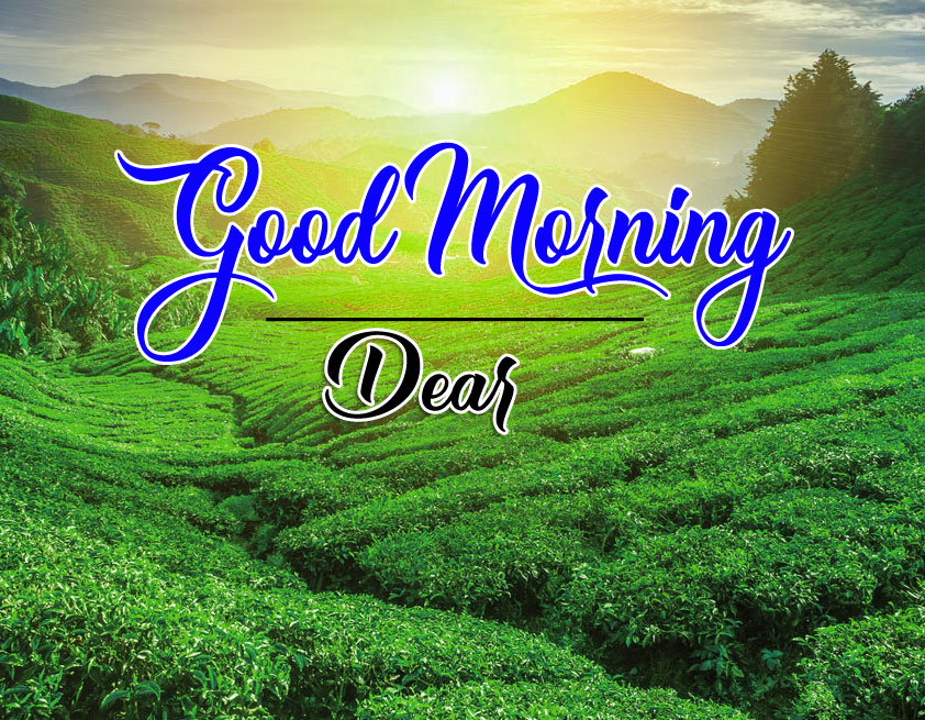 Nature HD Good Morning Wishes Images 2