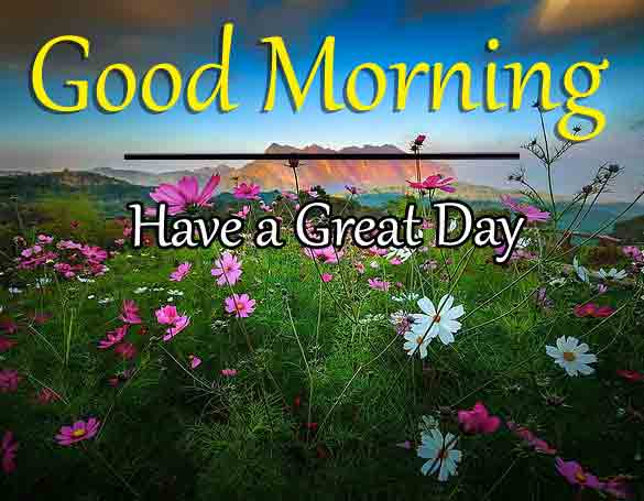 Nature HD Love Good Morning Images