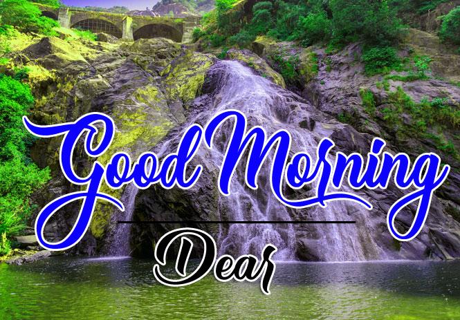 Nature HD good morning Whatsapp dp Images Pics