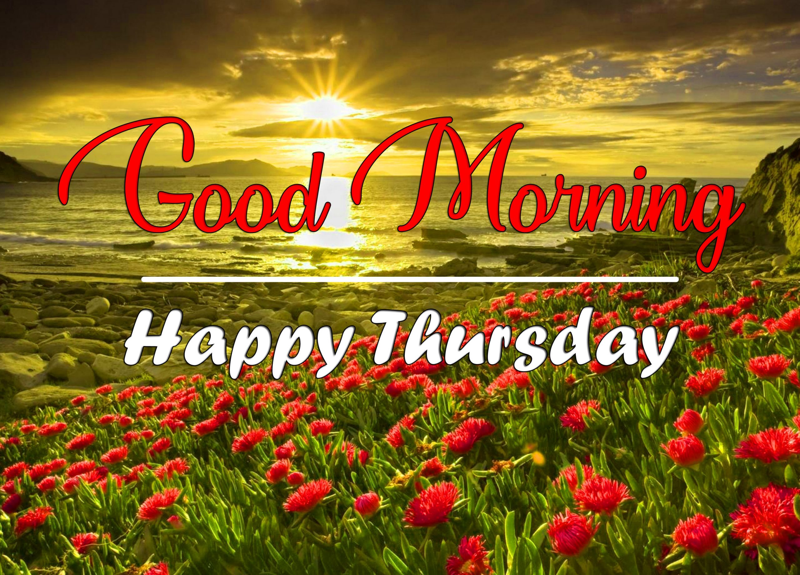 Nature HD thursday morning Images 2