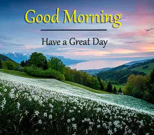 New 2021 Good Morning Dear Imagws